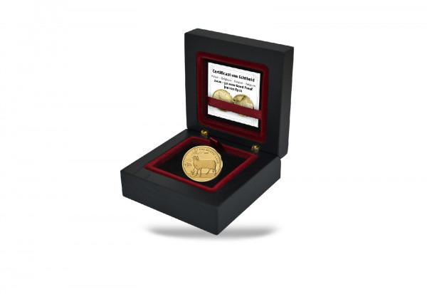 50 Euro Goldmünze 2020 Belgien Jan van Eyck PP im Etui