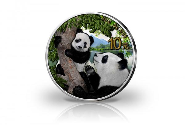 Panda 30 Gramm Silber 2021 China veredelt mit Farbapplikation