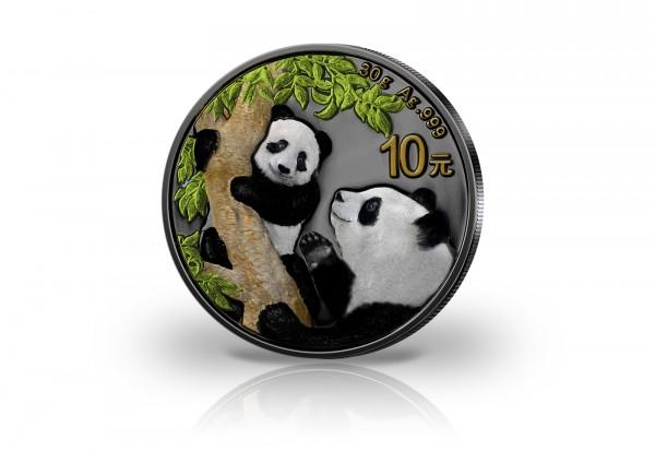 Panda 30 Gramm Silber 2021 China veredelt mit Ruthenium und Farbapplikation