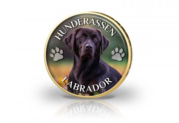 2 Euro mit Farbmotiv und 24 Karat Goldauflage Labrador Retriever