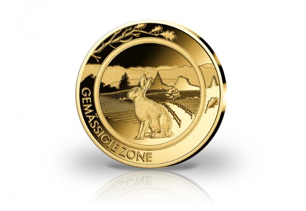 Goldausgabe 1/10 oz Gemässigte Zone Hase PP im Etui