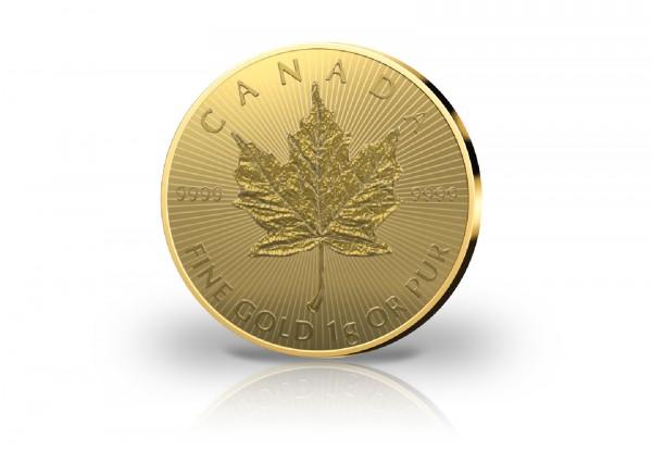 Maple Leaf Maplegram 1 Gramm Gold 2020 Kanada als 25er Pack im Blister