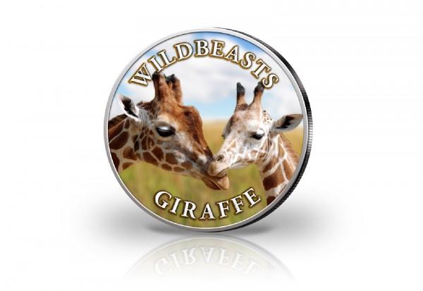 Krügerrand 1 oz Silber Südafrika mit Farbmotiv Giraffe