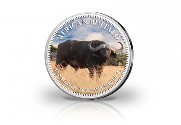 Krügerrand 1 oz Silber Südafrika mit Farbmotiv Büffel