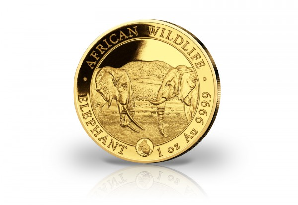 African Wildlife Serie 1 oz Gold 2020 Somalia Elefant mit Privy Mark Maus im Etui