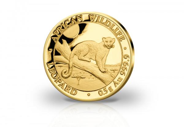 African Wildlife Serie 0,5 Gramm Gold 2021 Somalia Leopard