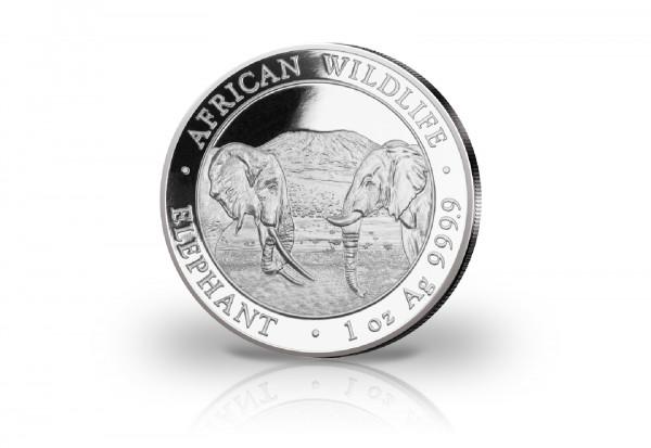 African Wildlife Serie 1 oz Silber 2020 Somalia Elefant