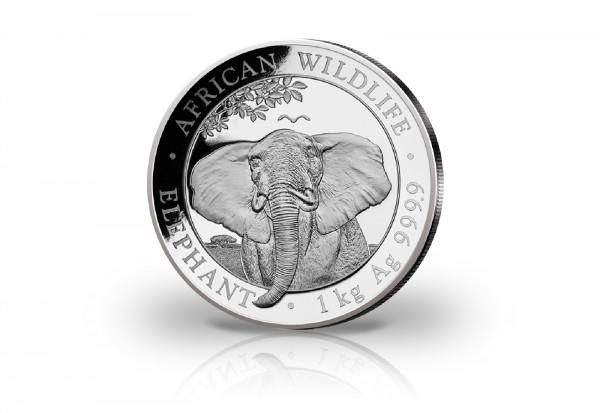 African Wildlife Serie 1 Kilogramm Silber 2021 Somalia Elefant