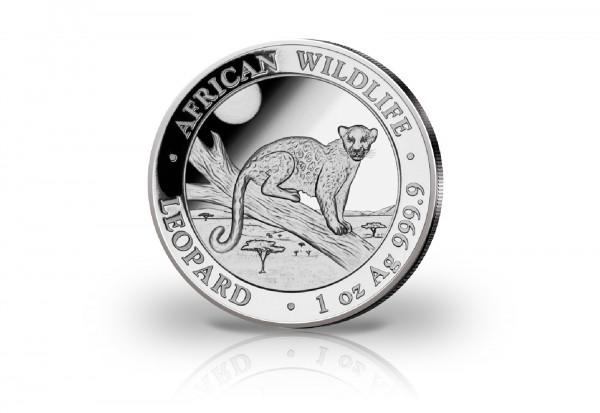 African Wildlife Serie 1 oz Silber 2021 Somalia Leopard