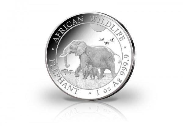 African Wildlife Serie 1 oz Silber 2022 Somalia Elefant