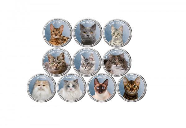 Die beliebtesten Katzen 10er Kollektion mit Farbmotiv im Etui inkl. Zertifikat