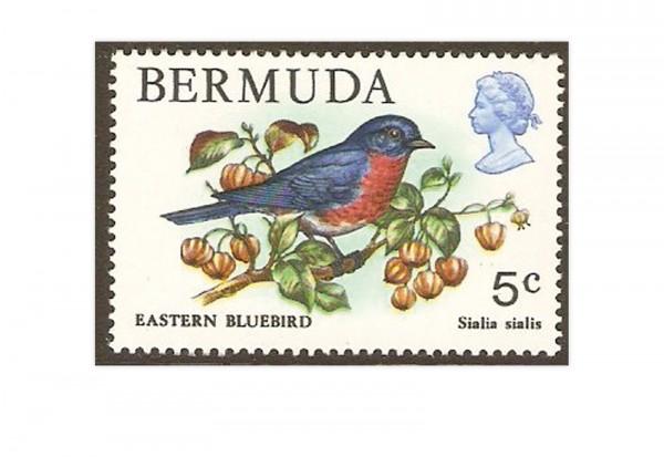 Bermuda 10 Marken
