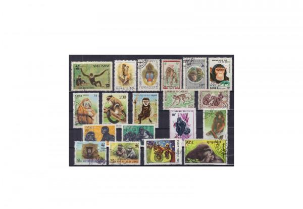 Briefmarken Alle Welt Affen 40 Marken auf Steckkarte