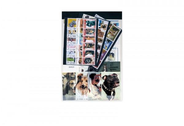 Briefmarken Motiv Hunde 100 verschiedene Briefmarken